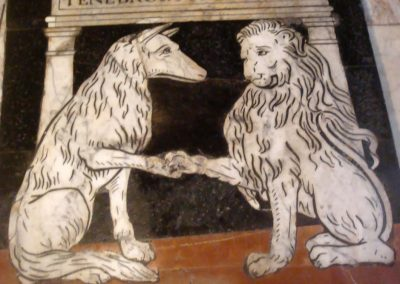 White Wolf and White Lion