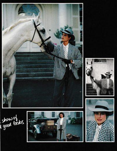 Orient Express - horse
